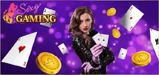 Online Gambling – How to Make Money